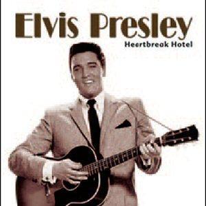Elvis Presley Heartbreak Hotel Dubman Home Entertainment