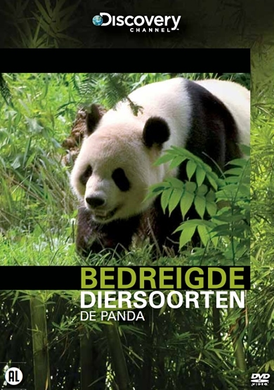 Bedreigde Diersoorten De Panda Discovery Channel